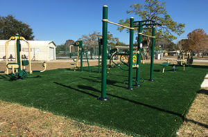 Tomlinson Park Exercise Equipment