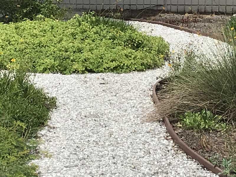 Gravel Pathway in prairie garden